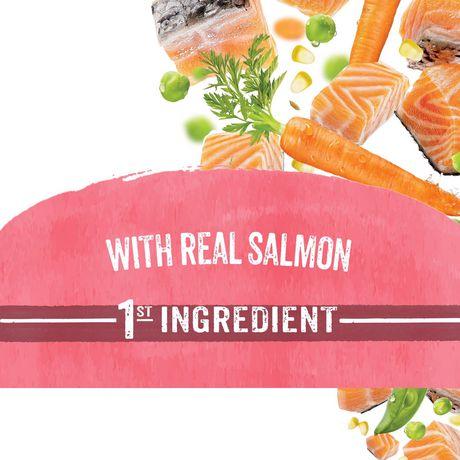 Beneful Originals Dry Dog Food, Salmon - image 2 of 8