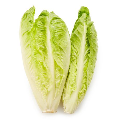 Lettuce, Romaine - image 1 of 1