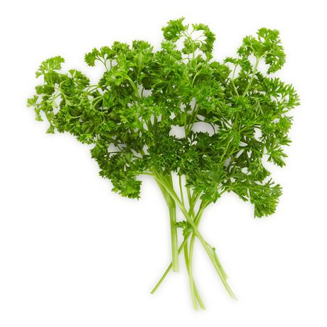 Parsley, Curly, Fresh - image 1 of 1