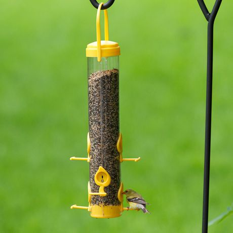 product the house finch up bird feeder bottoms ny