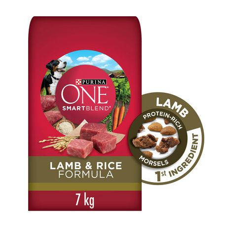 Purina ONE Smartblend Natural Dry Dog Food; Lamb & Rice Formula - image 1 of 9