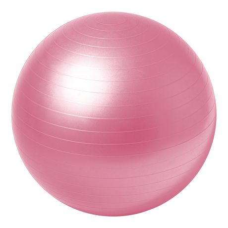 Everlast 65 cm Stability Ball Pro - image 3 of 3