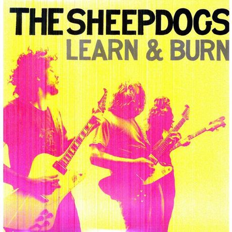 Sheepdogs learn and burn reviews