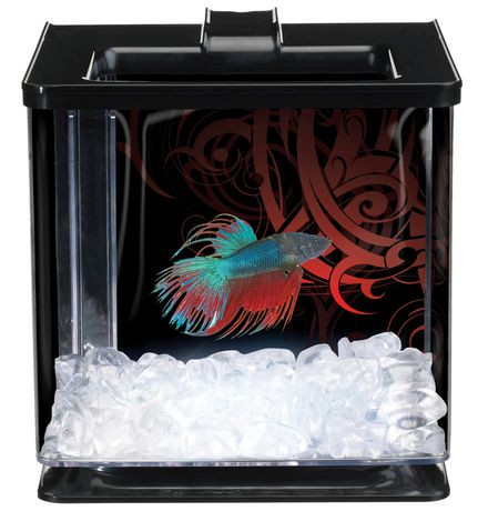 Marina ez care black led betta kit walmart canada for Betta fish tanks walmart