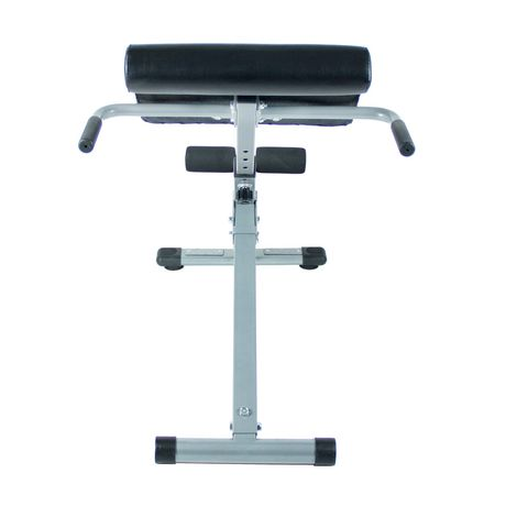 Chaise romaine de hyperextension Sunny Health & Fitness de 45 degrés - image 3 de 5