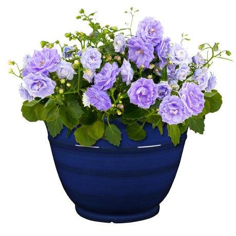 Jardini re d corative walmart canada for Jardiniere decorative