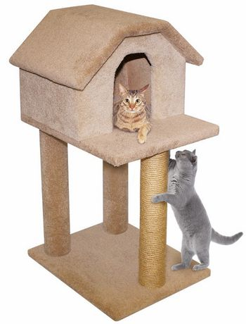 House Scratch Post Cats
