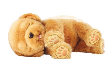 Snuggle Dog Toy