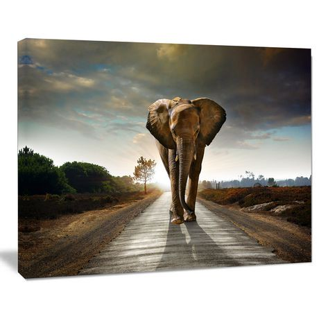 Steps to Create a DIY Photo Canvas. 1) First, choose the photo you want to create your canvas with and have it enlarged and printed to your chosen size at a photo lab on photo paper.. I do not recommend printing them at home.