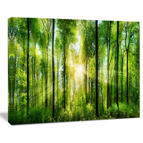 design art forest with rays of sun panorama landscape canvas print ...
