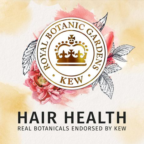 Shampooing hydratant sans sulfate Herbal Essence Bio:Renew Honey & Vitamin B - image 3 de 8