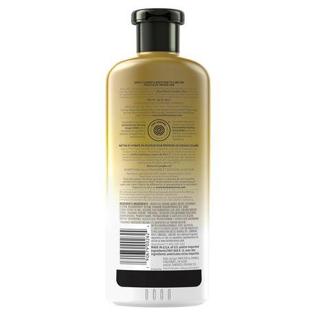 Herbal Essences Bio:Renew Honey & Vitamin B Sulfate-Free Moisture Shampoo - image 2 of 8