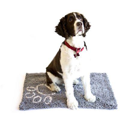 DANAZOO Microfiber Pet Drying Mat - image 2 of 3