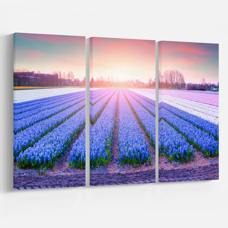 Design Art Field of Blooming Hyacinth Flowers Canvas Print - image 1 of 3