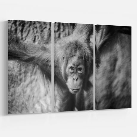 Design Art Jeune Orang-Outan Art Sur Toile - image 1 de 3