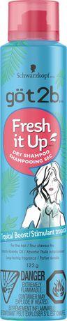 got2b Fresh it Up Dry Shampoo Tropical Boost - image 1 of 1