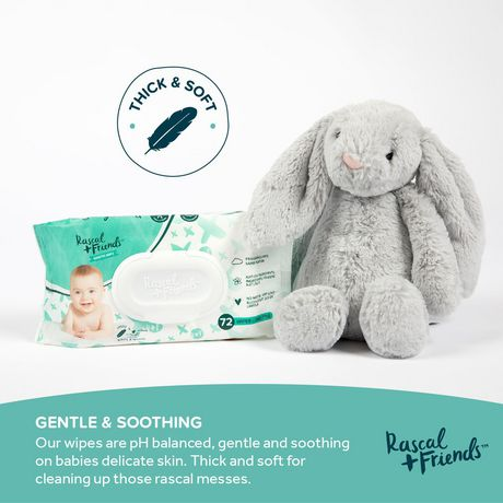 Rascal + Friends Sensitive Baby Wipes - image 3 of 8