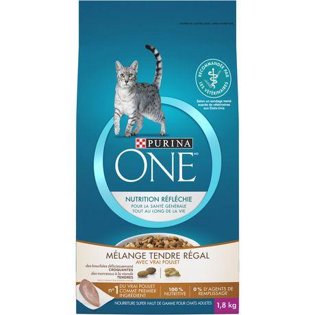 Purina One Cat Food Large Bag