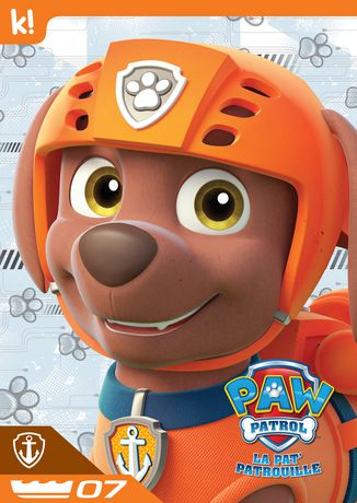 Beautiful PAW Patrol   Zuma Collection