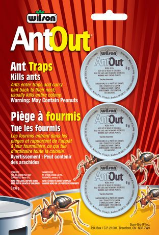Pi ges fourmis antout de wilson walmart canada - Piege a fourmis ...