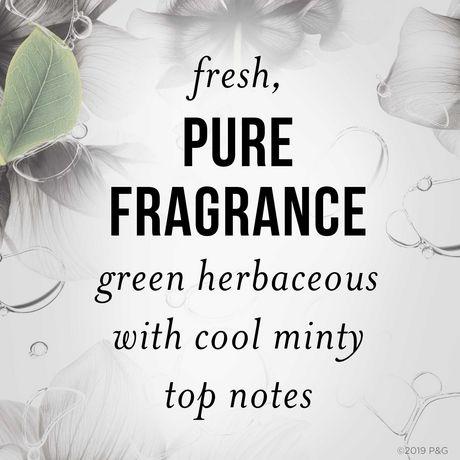 Pantene Pro-V Nutrient Blends Deep Detox & Renew Shampoo - image 4 of 7