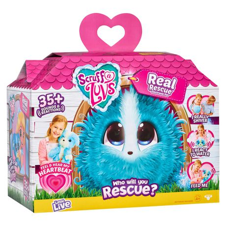 Multi-coloured house-shaped box toy from Little Live containing blue Scruff-a-Luvs toy