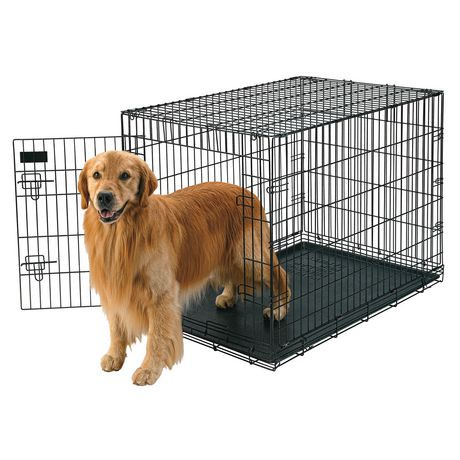 Dogs At Walmart For Wire Crate Photo Album - Wiring diagram schematic