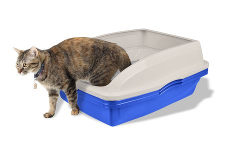 Van Ness Framed Sifting Cat Pan - image 7 of 8