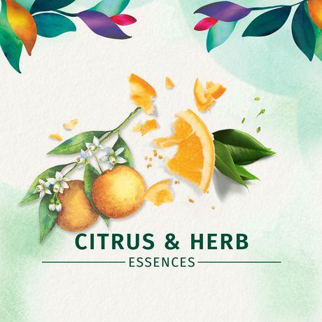 Shampooing Herbal Essences ScentEssences Energy avec essences d'agrumes - image 4 de 7