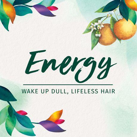Shampooing Herbal Essences ScentEssences Energy avec essences d'agrumes - image 6 de 7