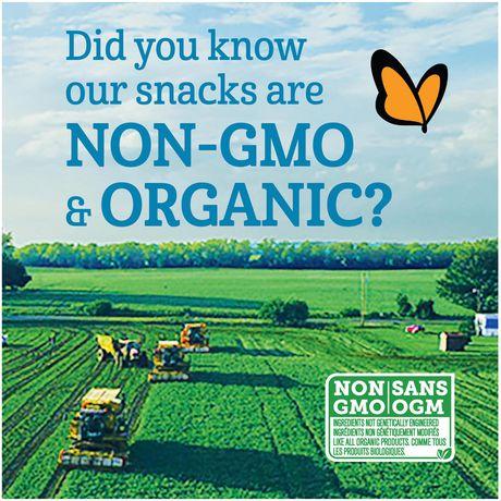 GERBER® Organic Yogurt MELTS® Strawberry Banana Toddler Snack - image 2 of 4