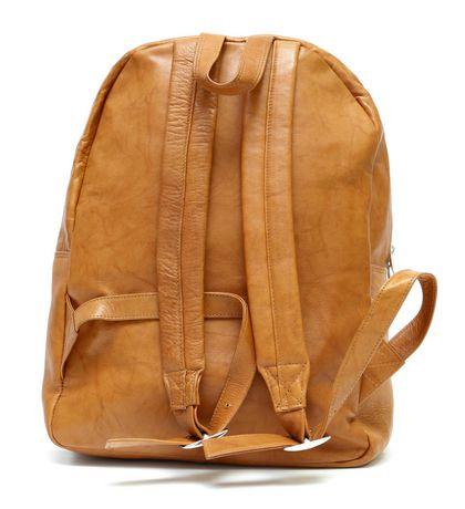 8fbb86c0c7c7 Ashlin Leather Traveler s Backpack