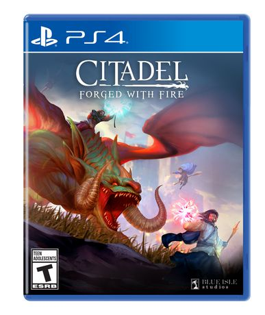 Citadel Forged with Fire (PS4) - image 1 of 7