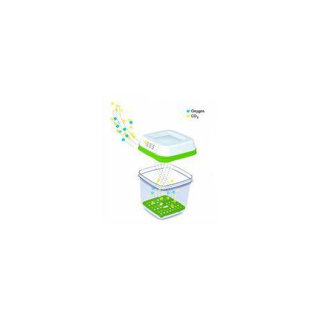 Récipients à aliments Fresh Works Produce SaverMC de Rubbermaid - image 4 de 5