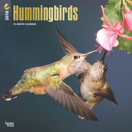 2018 Hummingbirds Calendar | Walmart Canada