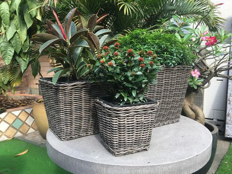 Grapevine Premier Square Resin Wicker Neutral Grey  Planters - image 5 of 5