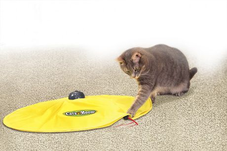 Allstar Products Group Cat's Meow™ CAT Toy - image 6 of 7