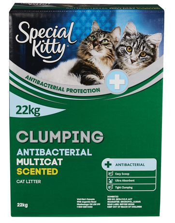 Special Kitty Clumping Antibacterial Multicat CAT Litter - Scented - image 1 of 2