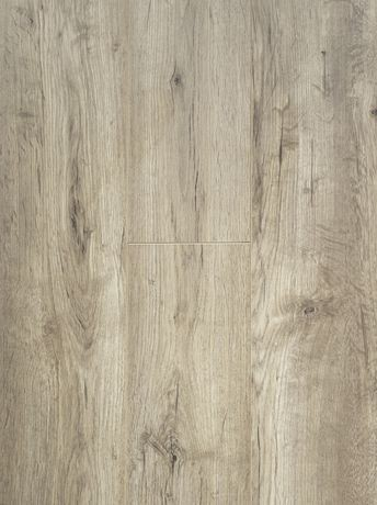 Forever Floor 8 2 Mm Seaside Oak Laminate Flooring