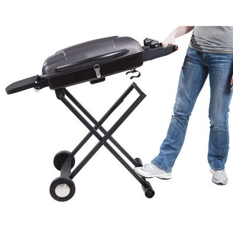 backyard grill 2 burner portable gas grill bbq with cart sc2000304
