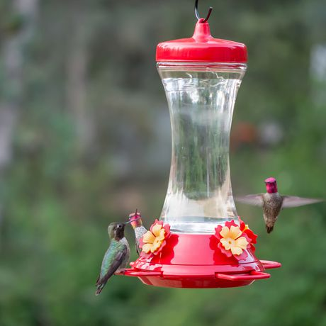 Perky-Pet Adjustable Perch Glass Hummingbird Feeder - image 4 of 9