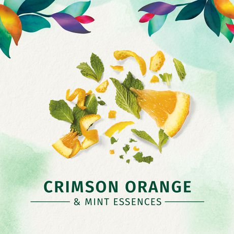 Herbal Essences Daily Detox Volume Dry Shampoo Crimson Orange & Mint - image 7 of 7