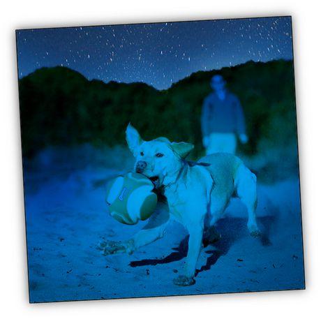 CHUCKIT! KICK FETCH MAX GLOW LARGE DOG TOY - image 4 of 4