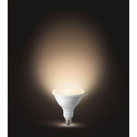 Philips Hue Outdoor Lampen.Philips Hue Par38 Smart Outdoor Light Bulb 2 Pack Walmart Canada