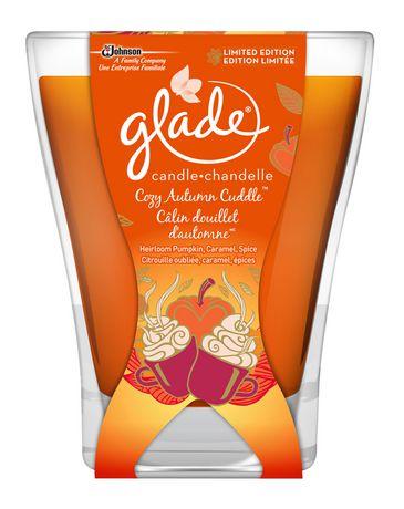Glade Cozy Autumn Cuddle Large Jar Candle - image 1 of 1