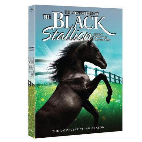 The New Adventures Of The Black Stallion: Season 3 - image 1 de 1