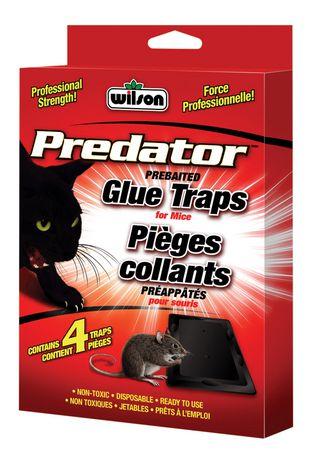 Predator Mouse Glue Traps - image 1 of 1