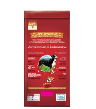 Purina ONE SmartBlend Natural Dry Dog Food; Chicken & Rice Formula - image 2 of 9