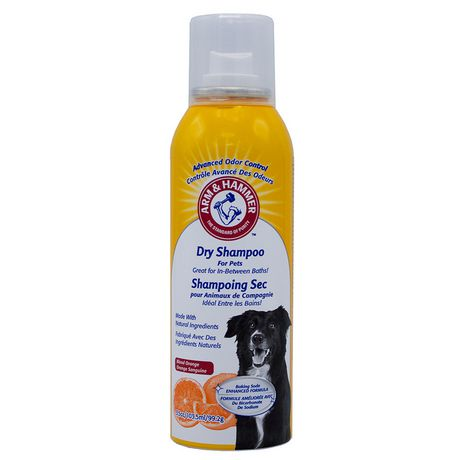 Shampoing sec Arm & Hammer pour animaux de compagnie - image 1 de 1