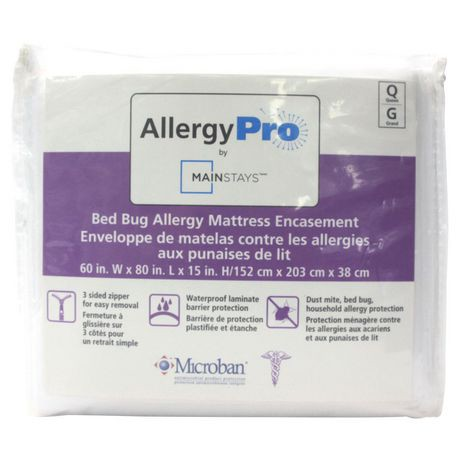 bugs mattresses when dealing on whats with without mattress for blog the best defending sleeping home bug bed terminix main protector covers buzzing your